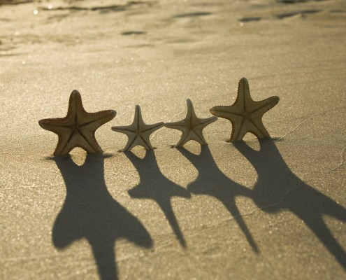 Happy starfishes on sand on sea coast.[url=http://www.istockphoto.com/file_search.php?action=file&lightboxID=1035964][img]http://santoriniphoto.com/Template-Sky-Nature.jpg[/img][/url]